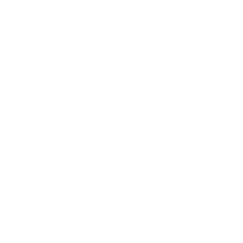 Vasayo Delivering Solutions